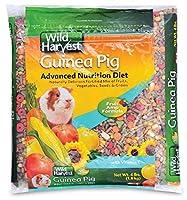 Wild Harvest G1970W Wh Adv Nutrition Diet G.P. 4# Bag [並行輸入品]
