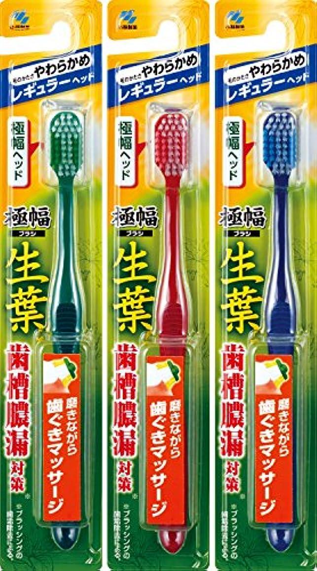 廃棄する旅行救急車【まとめ買い】生葉(しょうよう)極幅ブラシ 歯ブラシ レギュラーヘッド やわらかめ×3個