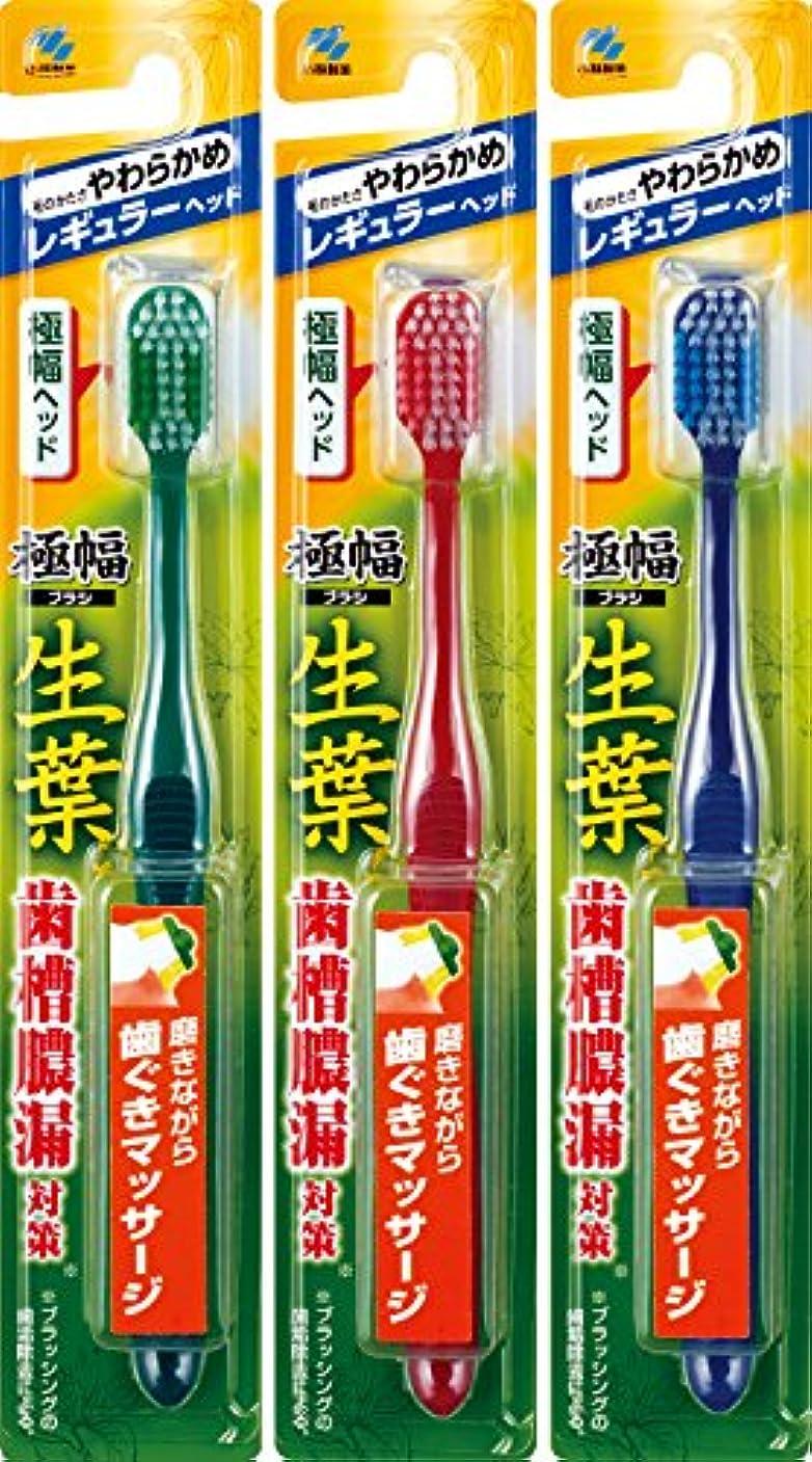 識別弁護士バーベキュー【まとめ買い】生葉(しょうよう)極幅ブラシ 歯ブラシ レギュラーヘッド やわらかめ×3個