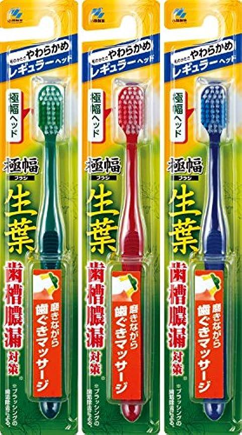 スリッパスリラー修士号【まとめ買い】生葉(しょうよう)極幅ブラシ 歯ブラシ レギュラーヘッド やわらかめ×3個