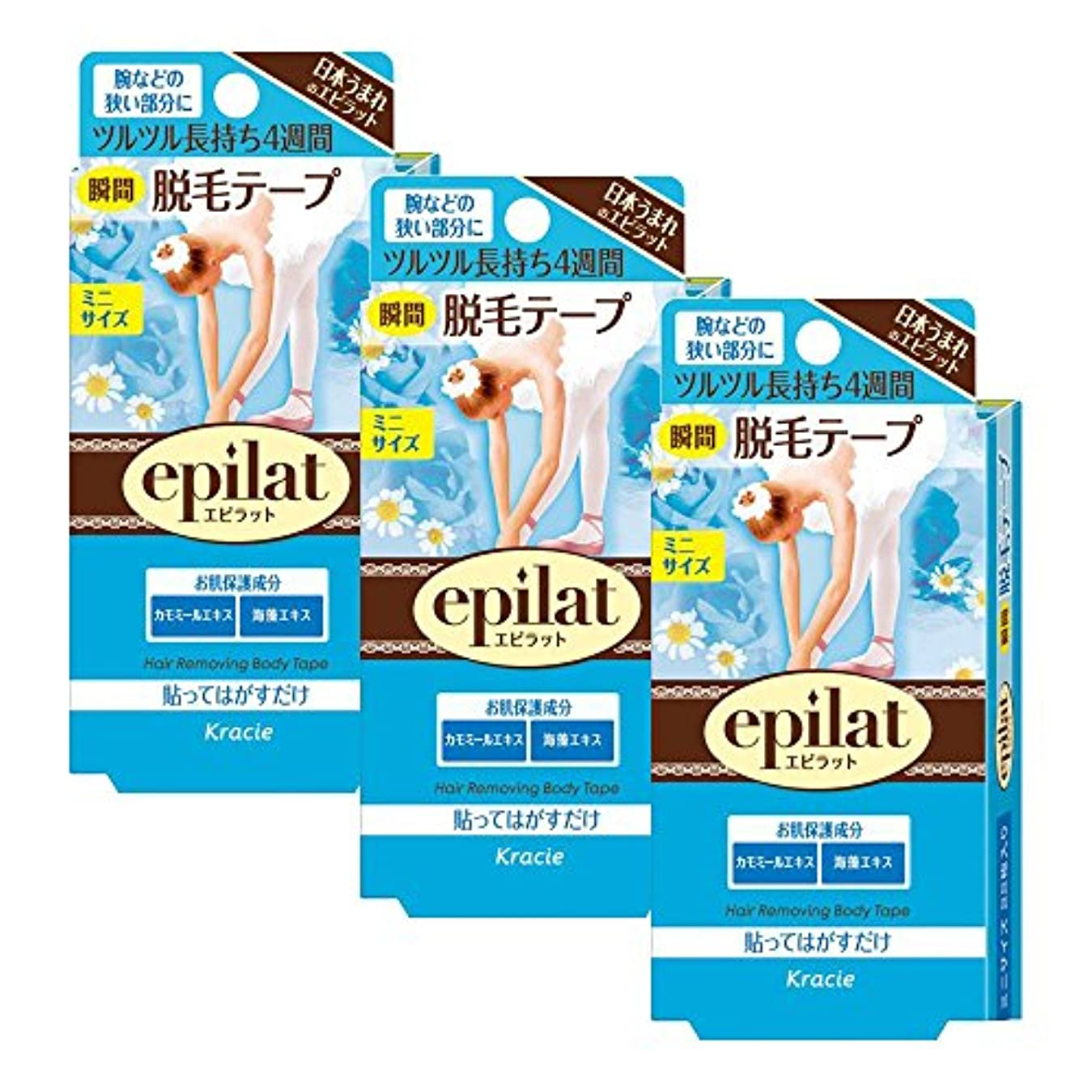 然とした袋存在【セット品】エピラット 脱毛テープ ミニサイズ 22枚 ×3個