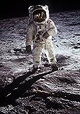 絵画風 壁紙ポスター (はがせるシール式) 月面着陸 アポロ11号 1969年 NASA キャラクロ NAS-009A2 (A2版 420mm×594mm) 建築用壁紙+耐候性塗料