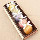 天使のマカロン 5個入 プチギフト リボン付き個包装 ホワイトデー お返し マカロン お菓子 詰め合わせ 手土産