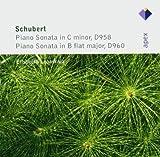 Schubert : Piano Sonatas Nos 19 & 21 - Apex by Elisabeth Leonskaja (2005-03-21)