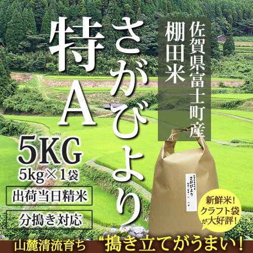 棚田米 特A さがびより 極上の棚田米 5kg 玄米 [令和元年産]