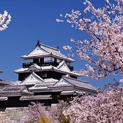 PT-004 桜咲く松山城 「日本の名城 - 桜」ポストカード