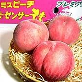 福島産 桃 もも ミスピーチ 5kg 中玉 18~20個入り