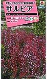 【種子】サルビア プルコ ジュエルミックス 花 0.1ml タキイのタネ