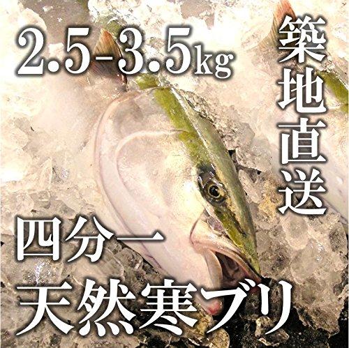 天然寒ブリ 四分一の冊 生 鮮魚 日本海 約2.5-3.5kg 【築地直送】鮮魚 鰤 寒ブリ