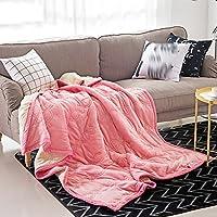 ブランケット 毛布 ダブルエアーコンディショナー太いクロスラインサンゴフラフポリエステル(5色、3サイズ対応) TINGTING (色 : パウダー, サイズ さいず : 180*200)