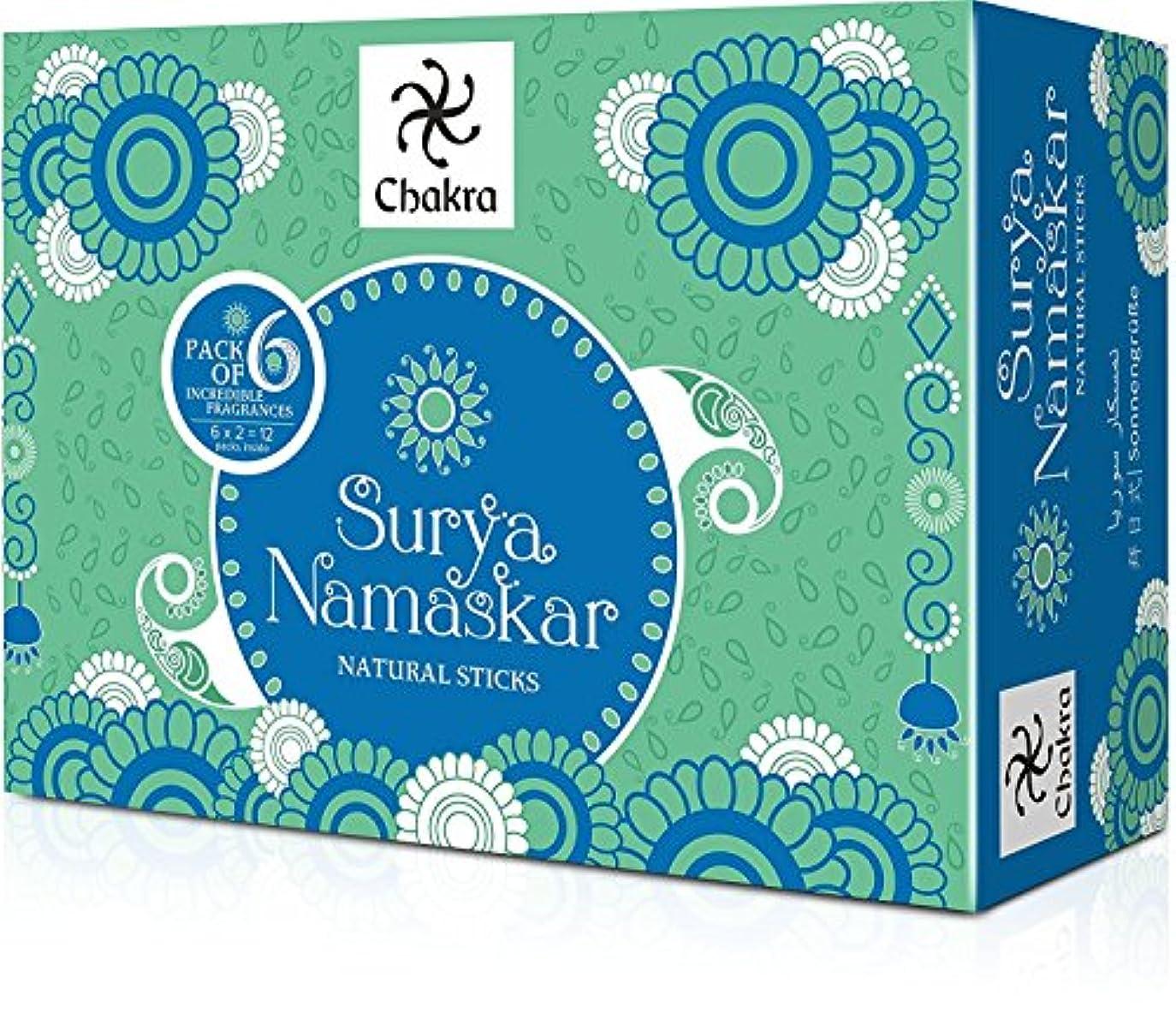 見出し競争力のある冗談でチャクラSurya Namaskar長持ちIncense sticks- 6 Fragrance – Madeから天然エッセンシャルオイル&ハーブingredients- Inspired byヨガaasanas- Effective...