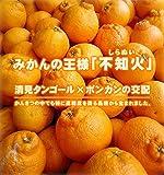 【 訳あり 不知火 ( しらぬい ) 】 愛媛 県産 デコ ちゃん 9 kg 【 清見 × ポン カン の 高級 柑橘 】