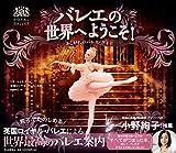 バレエの世界へようこそ:あこがれのバレエ・ガイド 画像