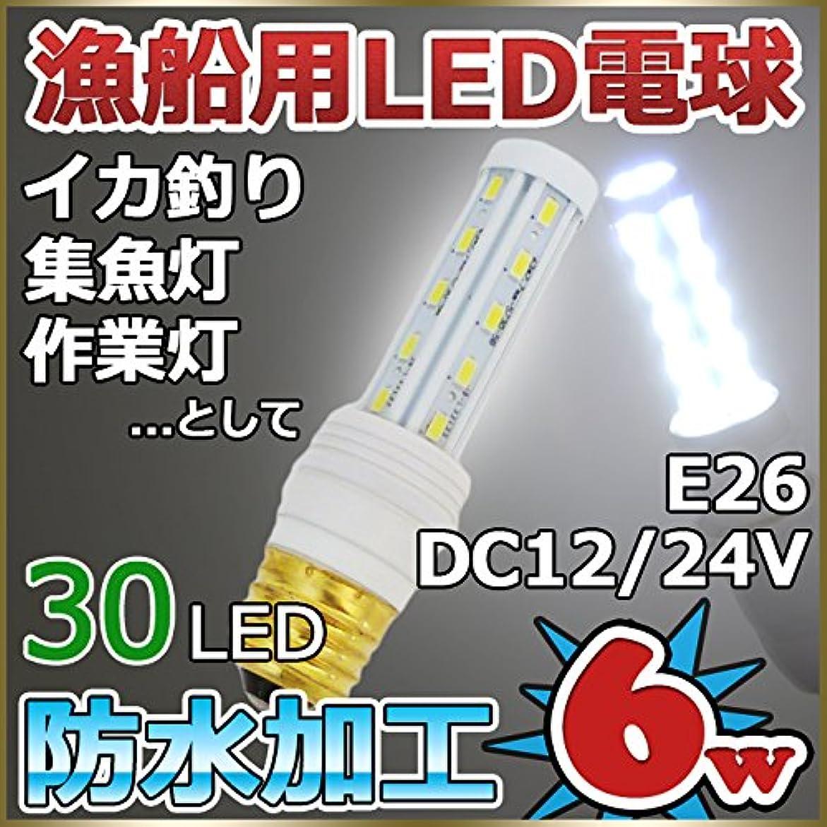 多分ベアリングサークルやけど漁船 船舶用LED電球 12v 24v 6w 6000k 口金E26 イカ釣り 漁船 集魚灯 LED防水電球