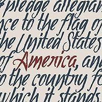 CypressホームAmerica用紙カクテルナプキン、20カウント