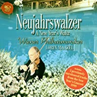 MAAZEL LORIN - NEW YEAR'S CONCERT COMPILATION (1 CD)