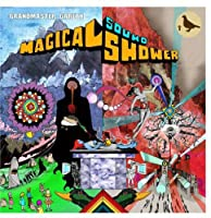 Magical Sound Shower [12 inch Analog]