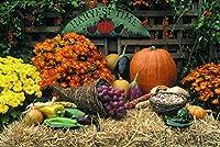 感謝祭グリーティングカード–Harvest Time–ht100。ビジネスグリーティングカードfeaturing、秋のアイテムの表示on Bales Of Hay。ボックスセットが25グリーティングカード、26パンプキンオレンジ色付き封筒。