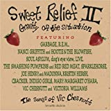 Sweet Relief II: Songs of Chesnutt