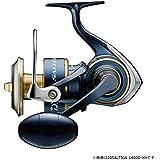 ダイワ(DAIWA) スピニングリール 20 ソルティガ (2020モデル)