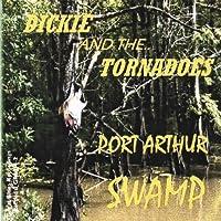 Port Arthur Swamp