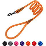 lynxking Braided Dog Rope Lead Leashes Pet Leash Dog Traction Rope Leashes Dog Walking Training Lead for Medium Large Dogs (4