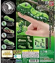 生物大圖鑒 蟲 青蛙的幼蟲 全3種全套(包含稀有)