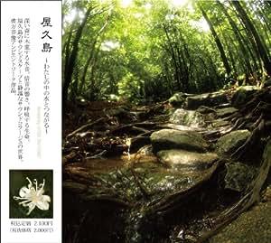 屋久島〜わたしの中の水とつながる〜
