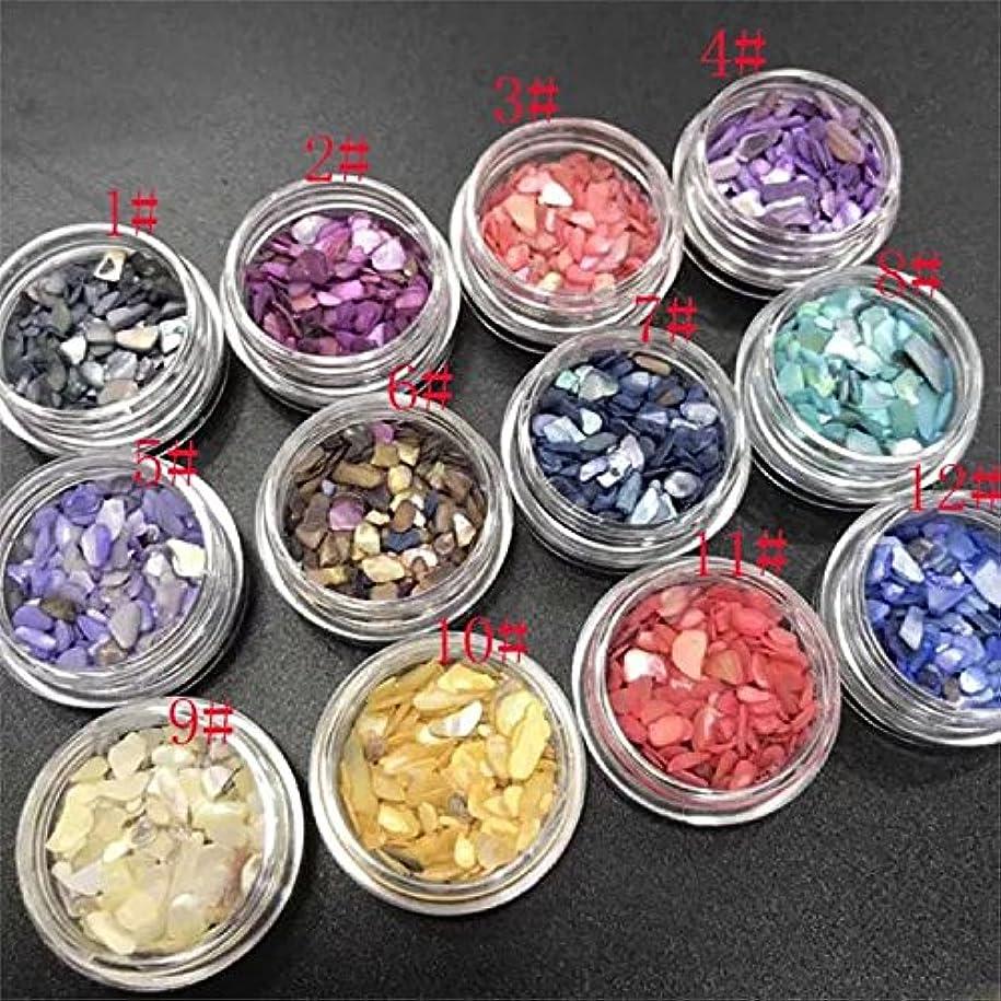 12色入り 最新 シェルストーン セット シェルフラワー アート用ストーン 貝殻