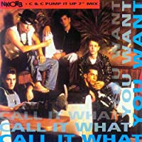 Call it what you want (1990) / Vinyl single [Vinyl-Single 7'']