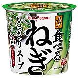 ポッカサッポロ 素材屋すうぷ 食べるねぎどっさりスープ カップ×6個