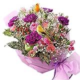 翌日配達お花屋さん 小鳥のさえずりが聞こえてきそう。お花畑で自由に気ままに飛び回る小鳥をイメージしました 幸せを願うカーネーション・ハミングバード(ムーンダストカーネーションアレンジメント) 誕生日・記念日・お祝い・結婚祝い・お見舞い・歓送迎会・結婚祝いお礼の花の配達便 正午までのご注文は翌日、またはご希望の日にお届け致します。※土曜の正午以降及び日曜の受付は月曜発送(火曜以降着)
