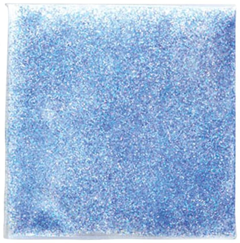 トランザクション明るい納屋ピカエース ネイル用パウダー ラメパステルレインボー S #447 ブルー 0.7g