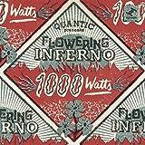 1000 Watts [帯解説・ボーナストラック4曲収録 / 国内盤CD + トートバッグ] (BRC514TB)