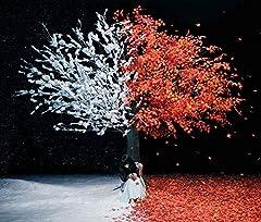 Aimer「茜さす」のCDジャケット