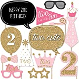 Two Much Fun - Girl - 2nd Birthday Party Photo Booth Props Kit - 20 Count