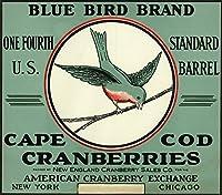 ケープコッド、マサチューセッツ州–ブルー鳥ブランドクランベリーラベル 9 x 12 Art Print LANT-20309-9x12