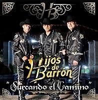 Surcando El Camino【CD】 [並行輸入品]