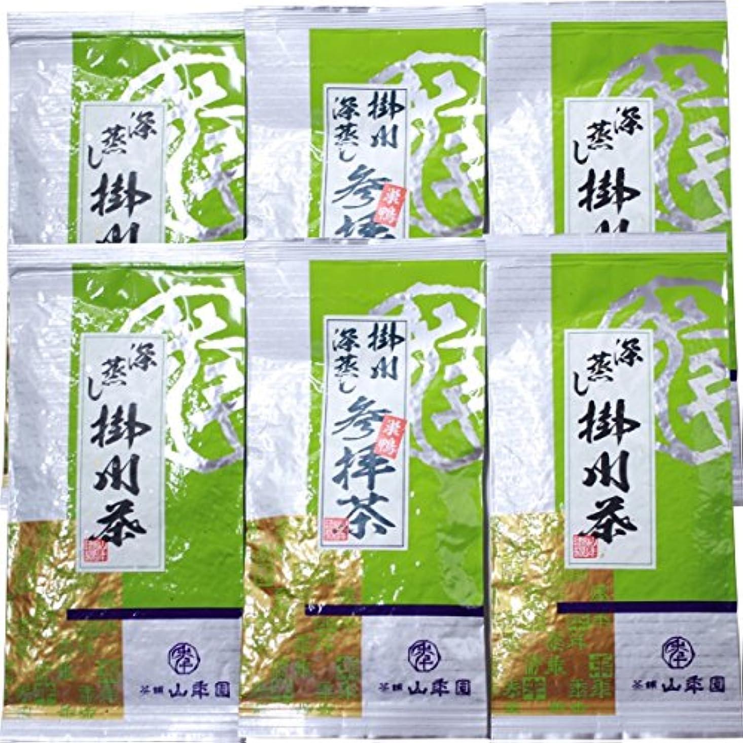 フェッチバングラデシュ欺く日本茶 お茶 茶葉 参拝茶100g×2袋+掛川深蒸し茶100g×4袋セット