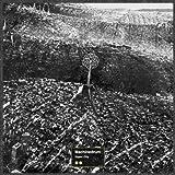 VAPOR CITY [帯解説・ボーナストラック1曲収録 / 国内盤] (BRC392)
