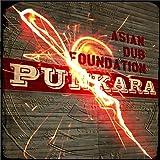PUNKARA[期間限定廉価盤] [歌詞対訳・解説・ボーナストラック付き国内盤] (TRCP77)