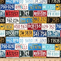 Timeless Treasures License Plates Multi Fabric by Timeless Treasures
