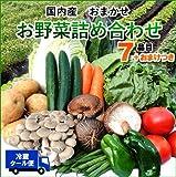 【送料無料・クール便込み】野菜セット7品目とおまけつき 使いやすい定番野菜 当店おまかせの新鮮野菜