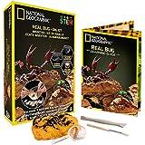 [ナショナルジオグラフィック]National Geographic Bug Dig Kit by NGBUG [並行輸入品]