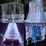 TOPLIFE イルミネーションライト ストリングライト 10メートル 100 LED電球 電池式 LED ライト リモコン付き 室外 装飾 結婚式 パーティー 飾り ライト 正月 クリスマス 飾り バレンタインデー 装飾(ホワイト)