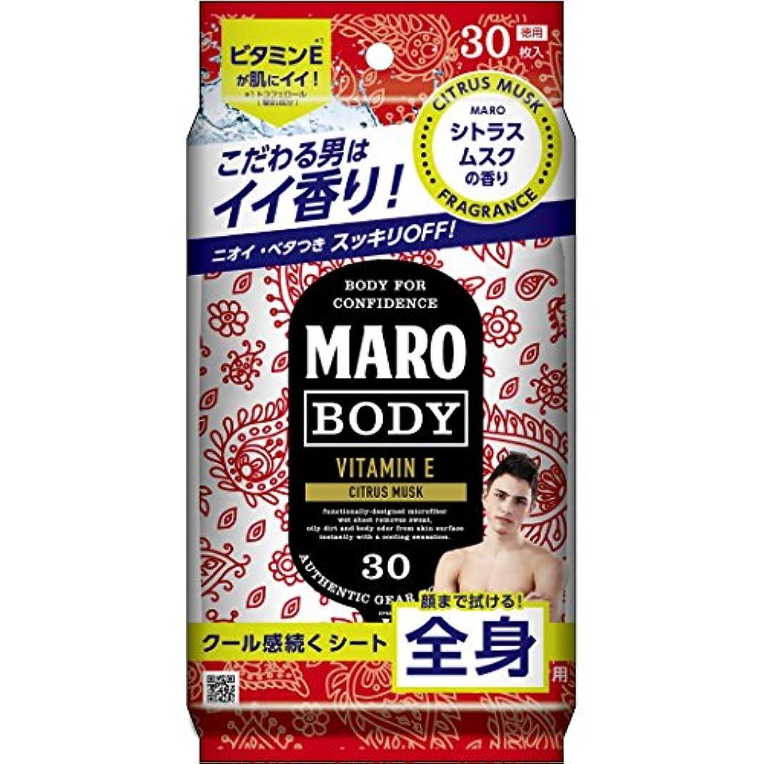 MARO デザイン ボディシート ペイズリー 30枚