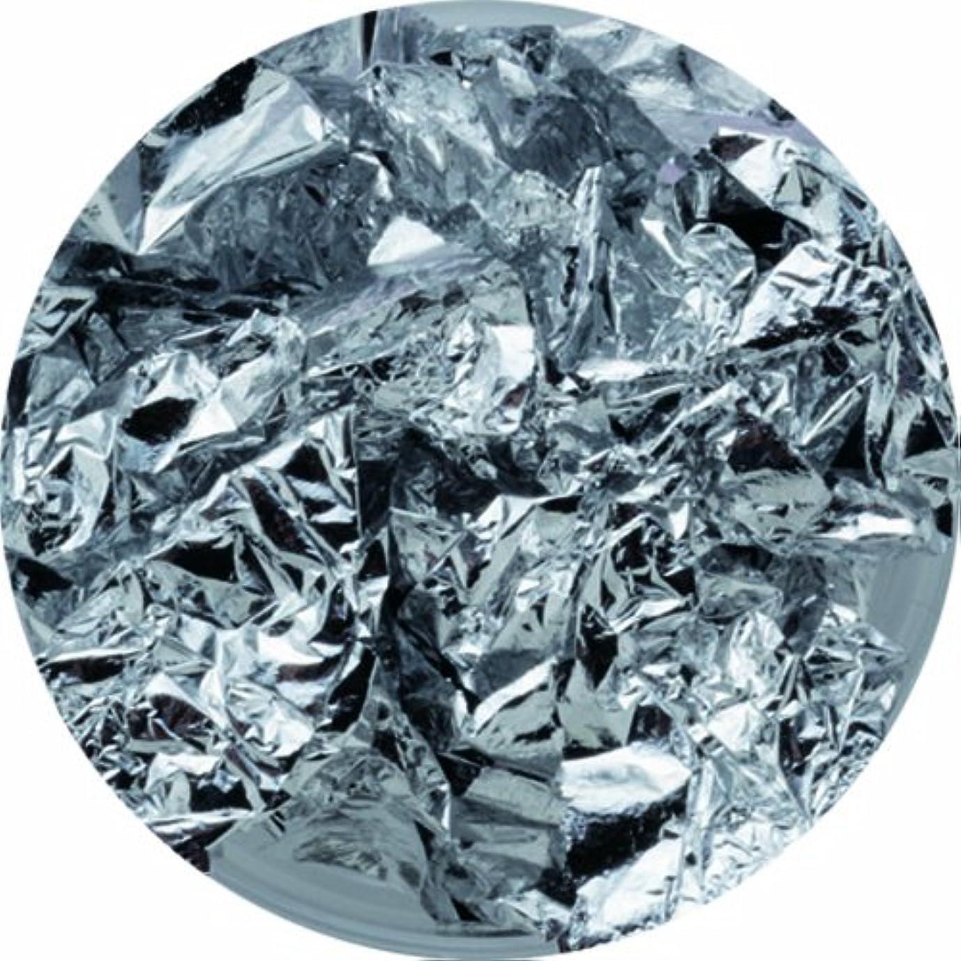 オーバーコート減らす目的ビューティーネイラー ネイル用パウダー 黒崎えり子 ジュエリーコレクション シルバーホイル