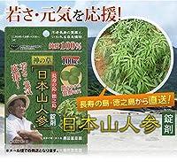 神の草 日本山人参 錠剤 100錠入