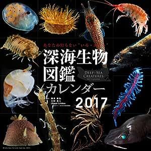 カレンダー「深海生物図鑑」2017年版