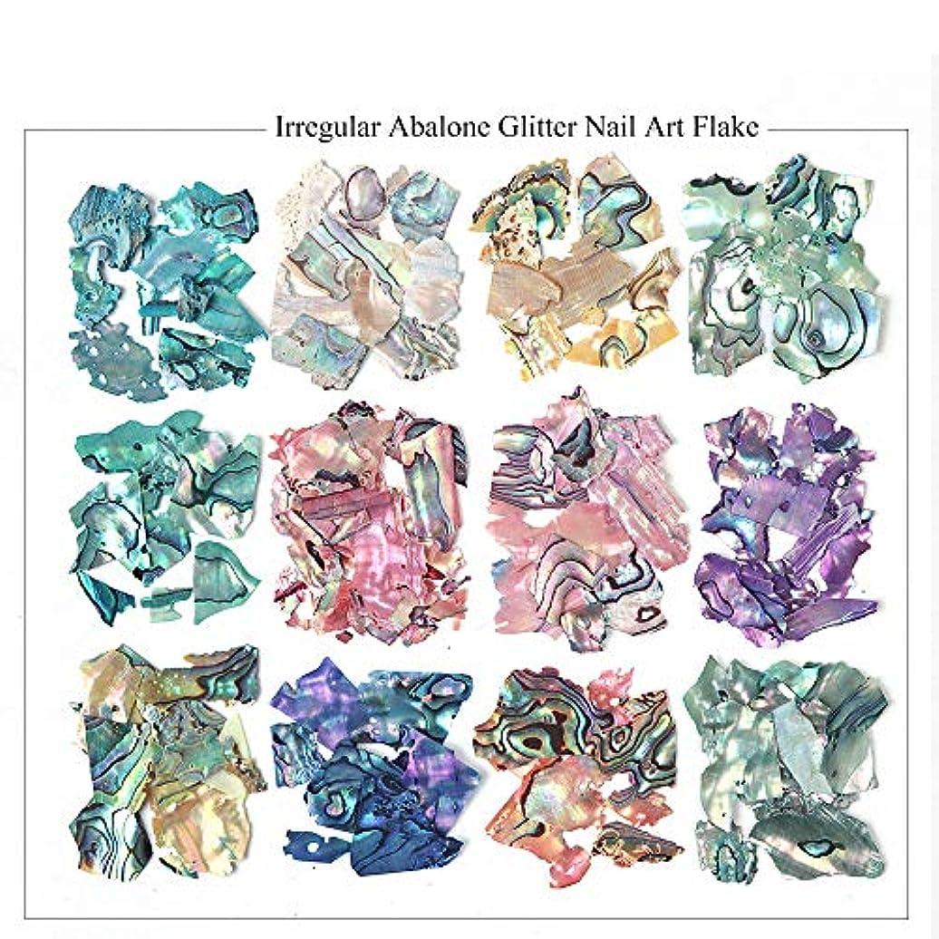 鉄朝ごはん遮る12色セット ネイル石パーツ ネイル貝殻風 偏光色 レジン ジェルネイル ネイルアート ネイルパーツ (BY)